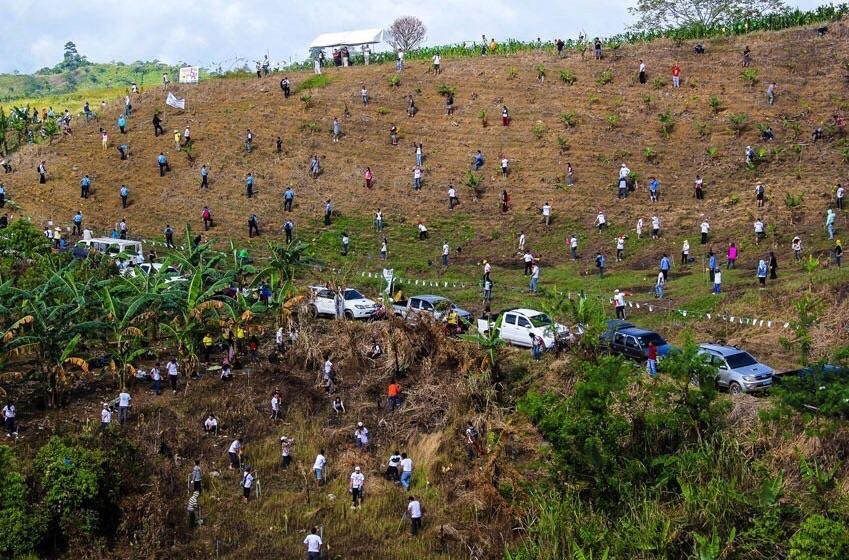 World Record: Planted 3 Million Trees in Just One Hour